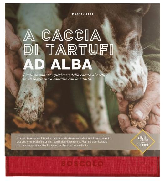 A caccia di Tartufi ad Alba image number 0