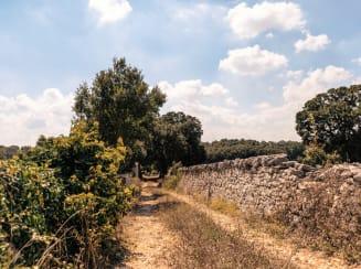 Valle d Itria